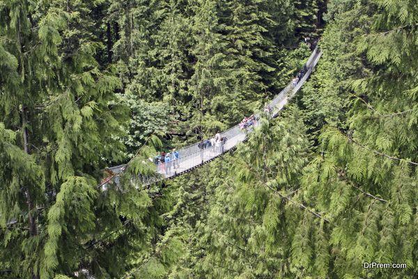 The Capilano suspension bridge, Vancouver