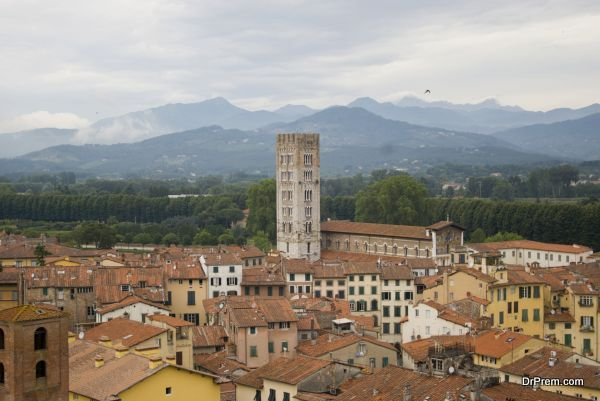 Rooftops of Lucca, Tuscany, Italy